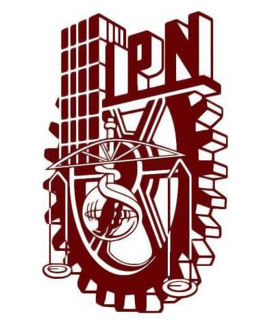 IPN en línea