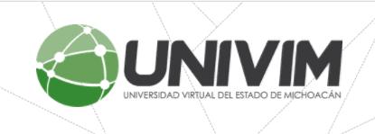 Logo UNIVIM